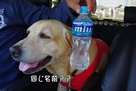 s-myu2009_0429(029)