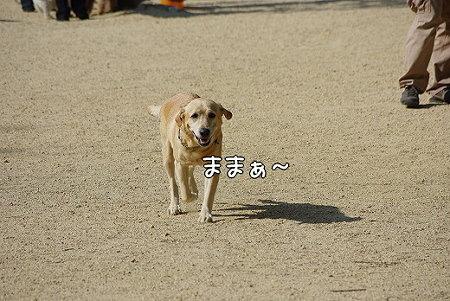 s-myu2009_0502(045)