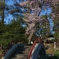 写真: 旭川の常盤公園~ 予定では...
