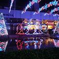 写真: クリスマス・イルミネーション2