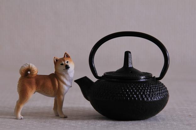 南部鉄器 水差し × 秋田犬