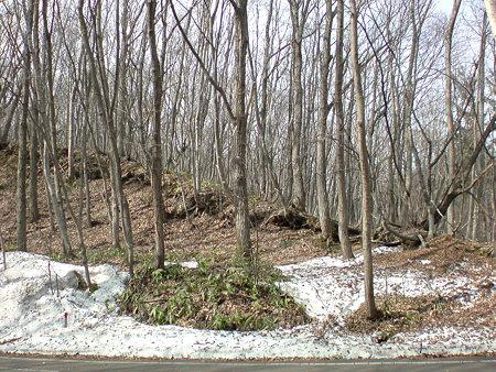 白石CR 残雪