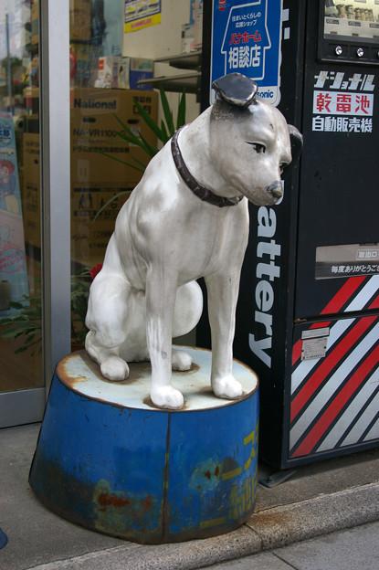 ビクターの犬