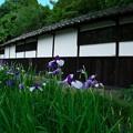 Photos: 庄屋屋敷