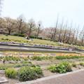 EOS_Kiss_X2_14-04-12_0050