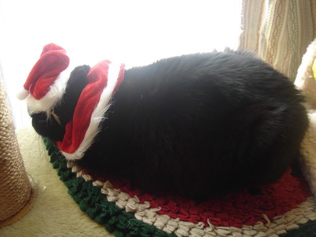 2007クリスマス10