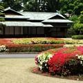 Photos: P5037457諏訪の茶屋