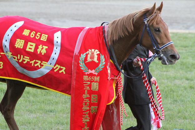 写真: アジアエクスプレス_1(第65回 朝日杯フューチュリティステークス)