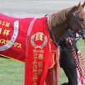 Photos: アジアエクスプレス_1(第65回 朝日杯フューチュリティステークス)