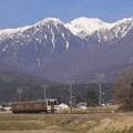 Photos: 春の飯田線(伊那本郷~七久保)2