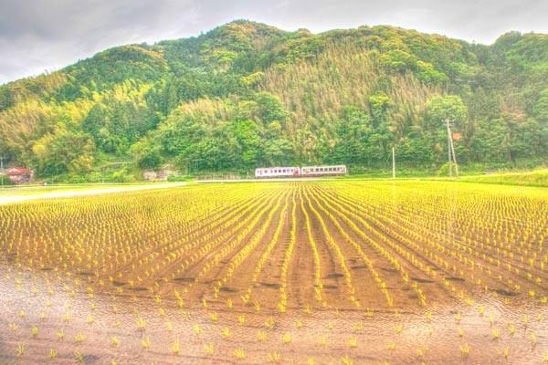 鉄道写真撮鉄画像 0529
