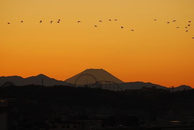 薄明の富士と帰巣