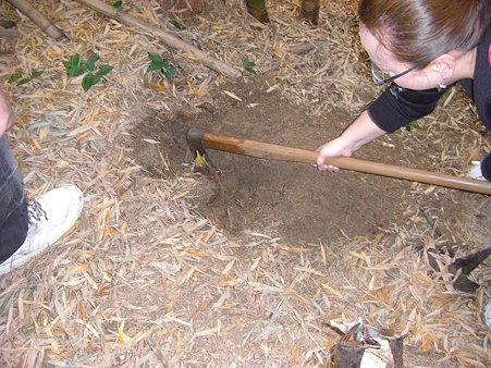 掘って掘ってまた掘って