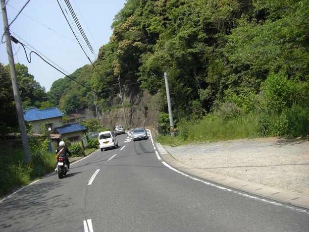写真: 山道を行く2