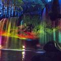 虹のカーテン   20140506-DSC_5075