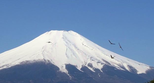 富士山航空隊