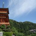 写真: 那智三重塔と大滝