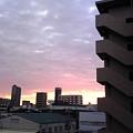 夜明けの色・・