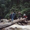 人間万事丸太橋が均衡 Log bridge to waterfall in Mandian