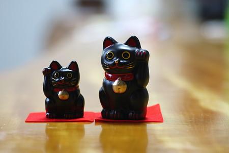 2009.02 笠森観音 招き猫(黒)