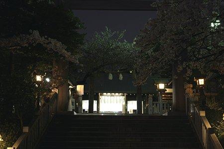 2009.04.07 横浜 夜桜 伊勢山皇大神宮