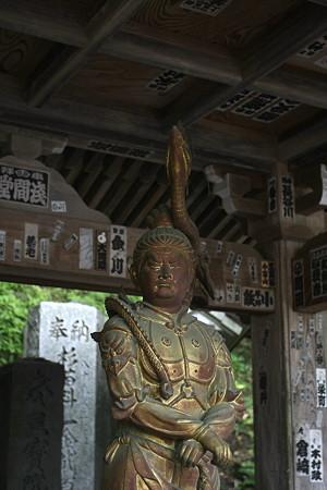 2009.05.10 高尾山 高尾山薬王院
