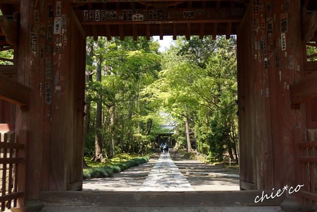 鎌倉-056