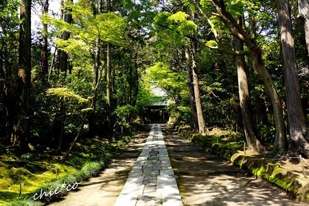 鎌倉-063