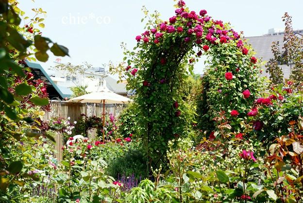横浜 English Garden-150