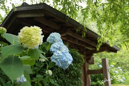 北鎌倉-038