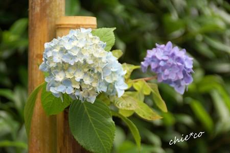 北鎌倉-041