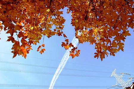 太いね~ 冬の飛行機雲・・♪