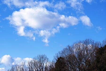 新春の青空・・