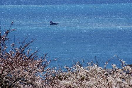 光のどけき・・春の海