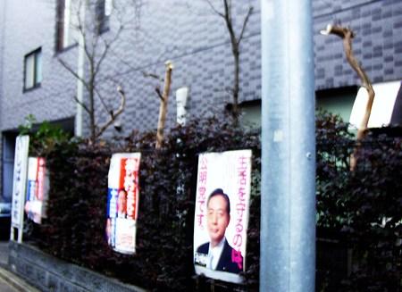 http://art2.photozou.jp/pub/724/206724/photo/18072323.jpg