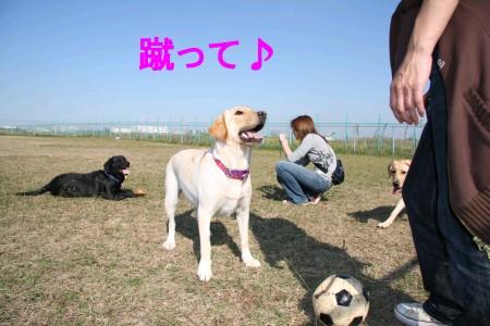 Photos: 蹴って♪