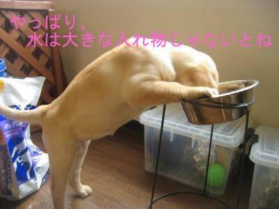 背伸び~~