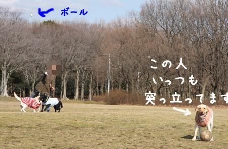 投げるよ~~!
