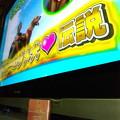 Photos: (・A・)