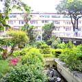 マニラ病院 救急室 Emergency Room of Ospital Ng Maynila