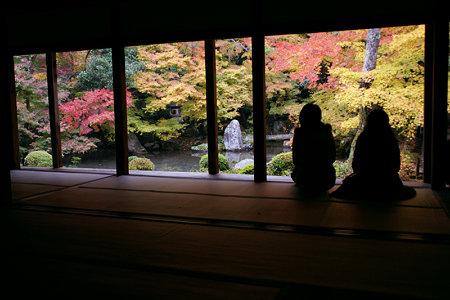 蓮華寺の額縁、紅葉絵。