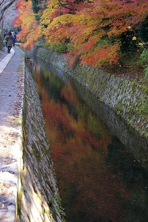 哲学の小道、川に映る紅葉の錦。
