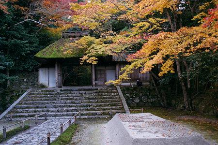 晩秋の法然院の黄葉!