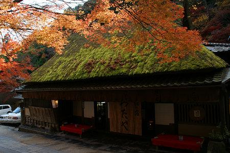 苔付の茅葺屋根と紅葉がなんども味わい!