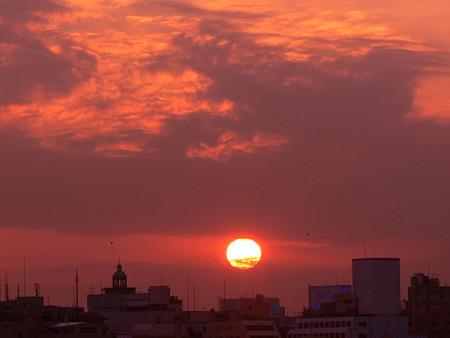 今日の夕陽1103ta