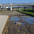 岡山後楽園駐車場の水害