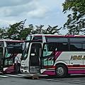 姫路観光バス