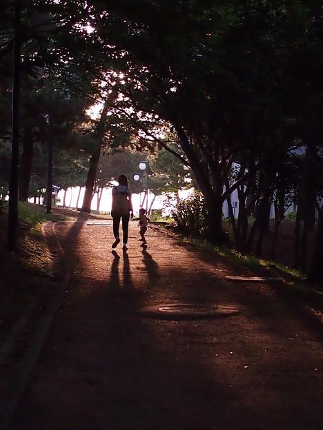 ぶらりお散歩