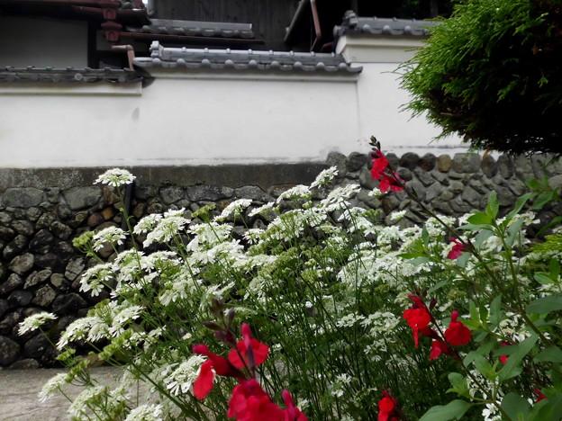 古道と白壁の家・3