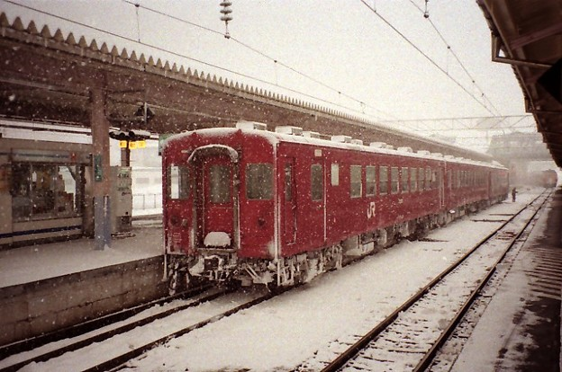 50 Series and falling snow